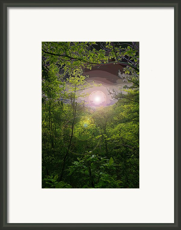 Paradise At Dawn Framed Print By Nina Fosdick