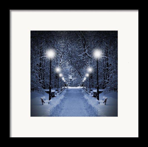 Park At Christmas Framed Print By Jaroslaw Grudzinski