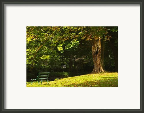 Park Bench Beside The Owenriff River In Framed Print By Trish Punch