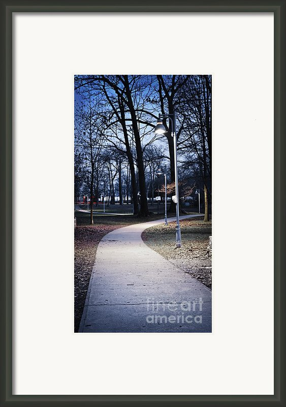 Park Path At Dusk Framed Print By Elena Elisseeva