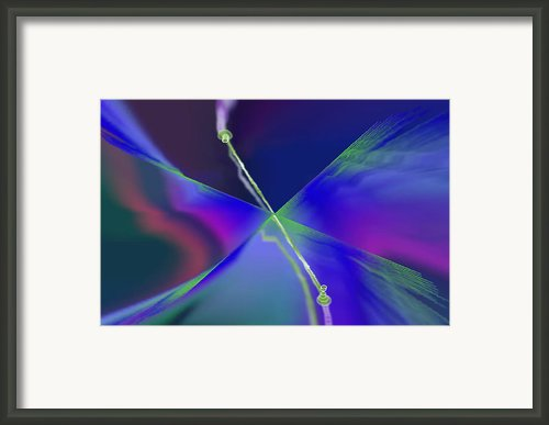 Part Time Trader Framed Print By Kaayla Halen