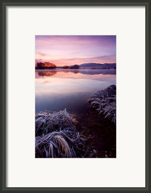 Pastel Dawn Framed Print By Mike  Dawson