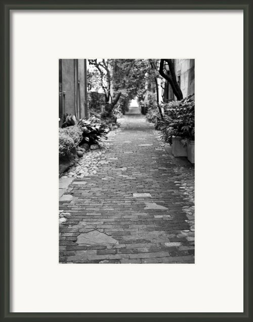Patchwork Pathway Framed Print By Dustin K Ryan