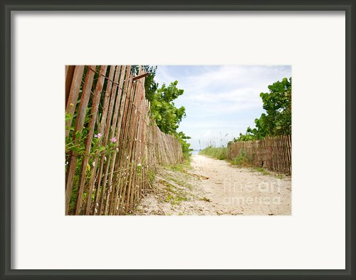Path To The Beach Framed Print By Matt Tilghman
