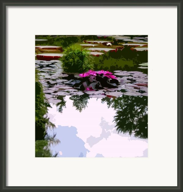 Patterns Of Peace Framed Print By John Lautermilch
