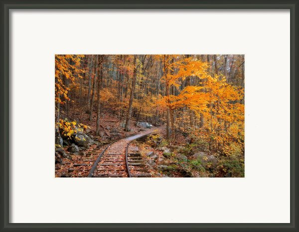 Peaceful Pathway Series 2 Framed Print By Kathy Jennings