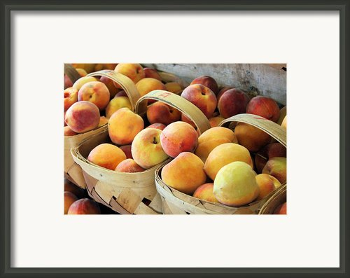 Peaches Framed Print By Kristin Elmquist