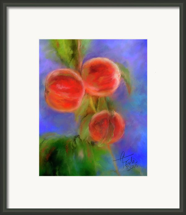 Peachy Keen Framed Print By Colleen Taylor
