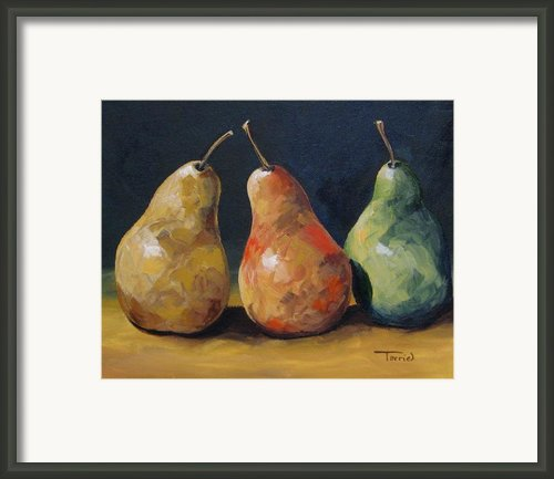 Pear Trio  Framed Print By Torrie Smiley