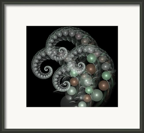 Pearl Curls Framed Print By Pam Blackstone