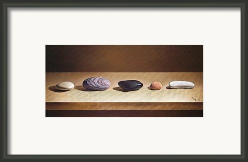 Pebbles On Parade Framed Print By Elena Kolotusha