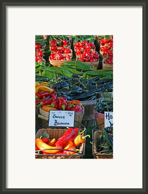Pepper Alley Framed Print By Steph Maxson