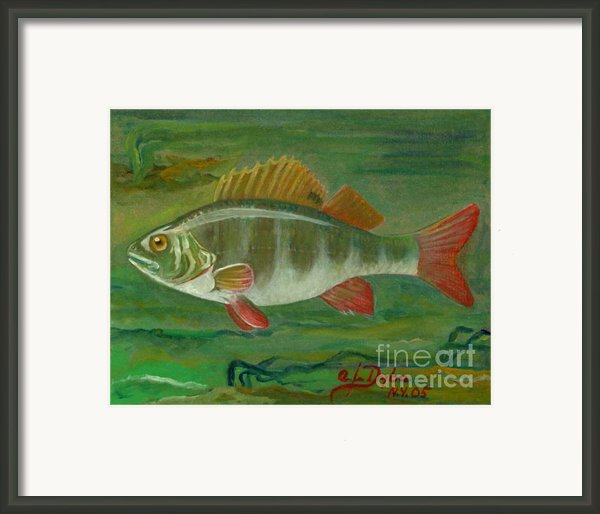 Perch Framed Print By Anna Folkartanna Maciejewska-dyba