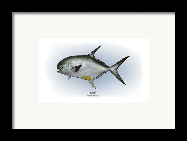 Permit Framed Print By Ralph Martens