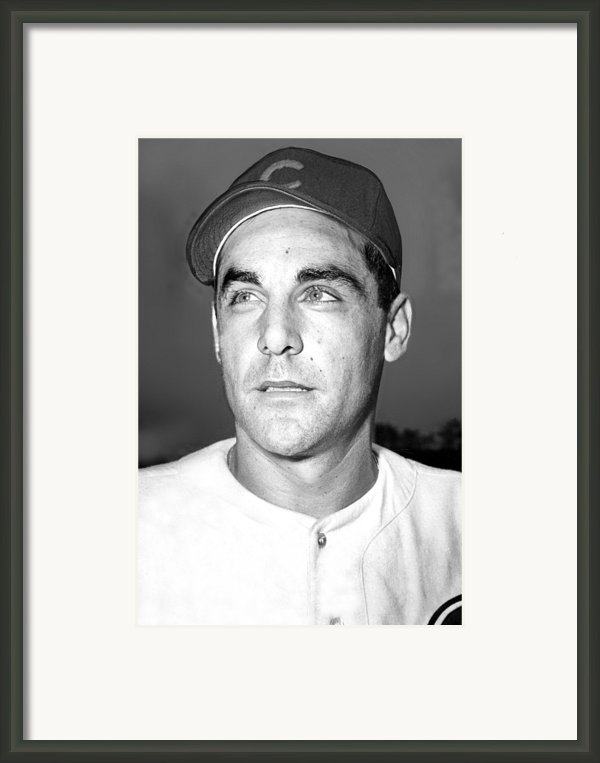 Phil Cavarretta, Lefty First Baseman Framed Print By Everett