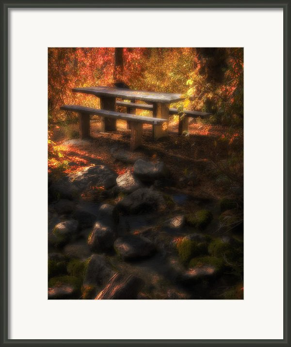 Picnic Table Framed Print By Utah Images