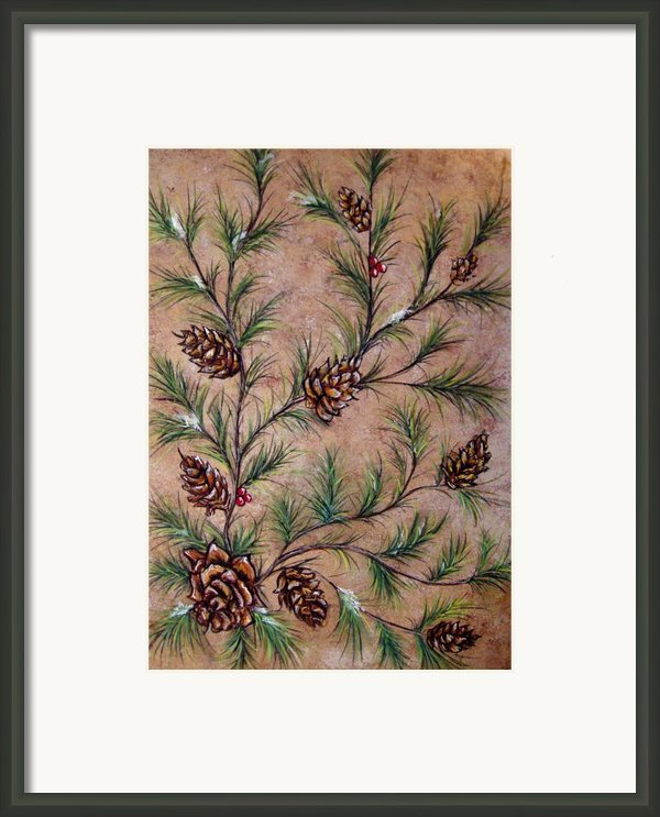 Pine Cones And Spruce Branches Framed Print By Nancy Mueller