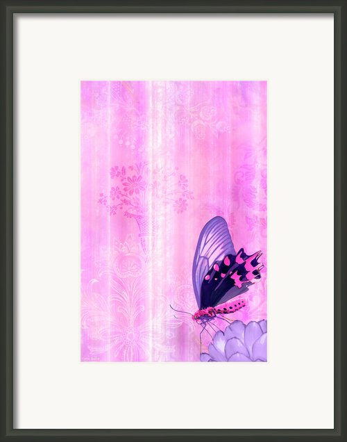 Pink And Purple Butterfly Companions 2 Framed Print By Jq Licensing