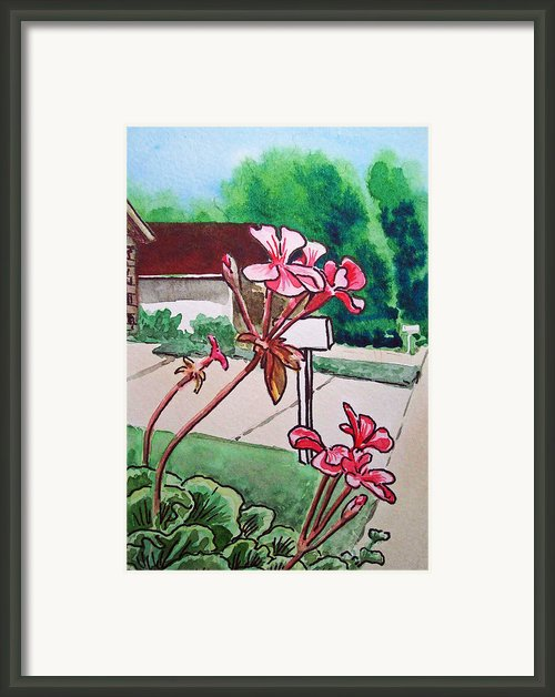 Pink Geranium Sketchbook Project Down My Street Framed Print By Irina Sztukowski