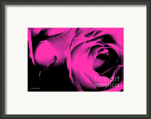 Pink Rose Pop Art Framed Print By Jayne Logan Intveld