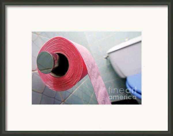 Pink Toilet Roll On Holder In Bathroom Framed Print By Sami Sarkis