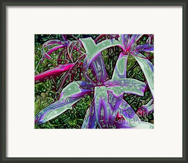 Plasticized Cape Lily Digital Art Framed Print By Merton Allen