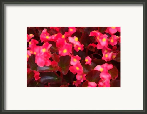 Play Time  Framed Print By Valerie Rakes