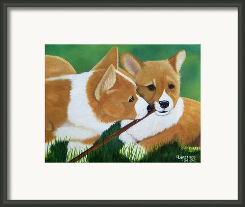 Playful Corgis Framed Print By Debbie Lafrance