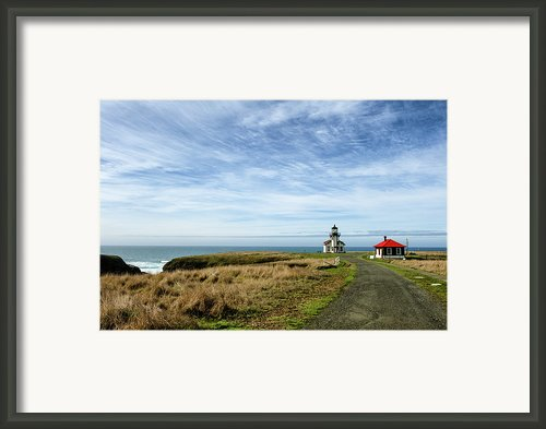 Point Cabrillo Framed Print By Mark Zukowski