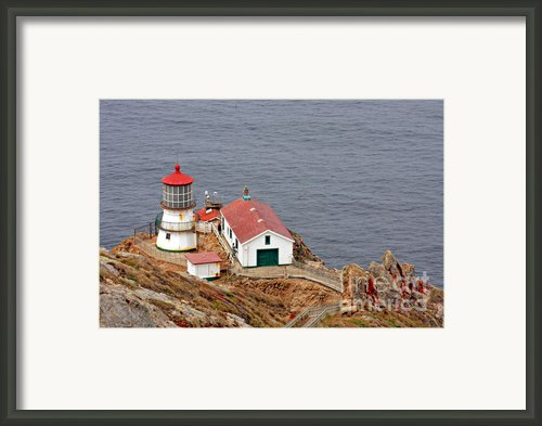 Point Reyes Lighthouse Ca Framed Print By Christine Till