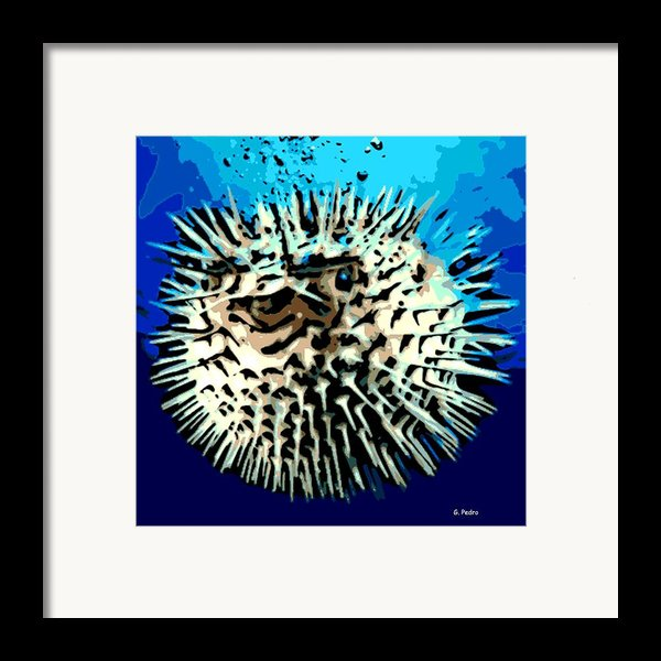 Pointed Opinion Framed Print By George Pedro