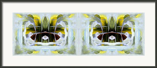 Pond In Fairyland Framed Print By Joe Halinar