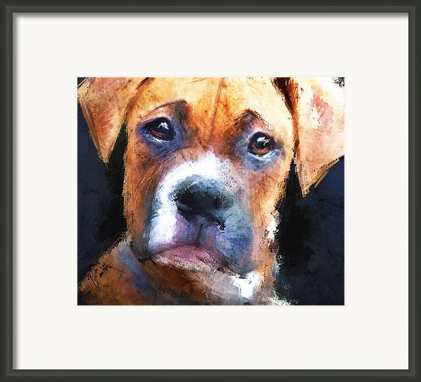 Pooch Framed Print By Robert Smith