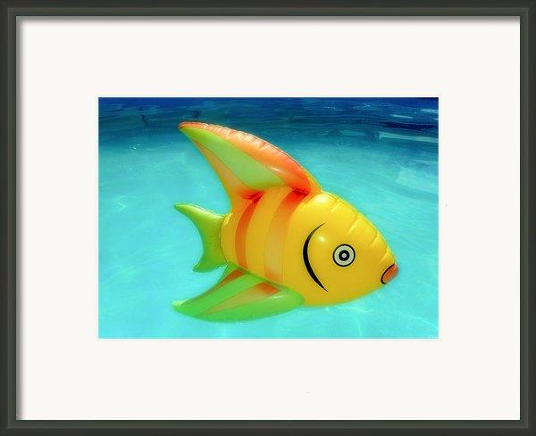 Pool Toy Framed Print By Tony Grider