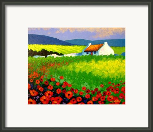 Poppy Field - Ireland Framed Print By John  Nolan