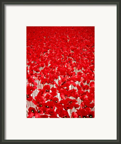 Poppy Meadow ... Framed Print By Juergen Weiss
