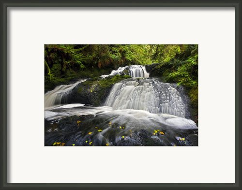 Port Ludlow Waterfall Framed Print By Mike Decesare