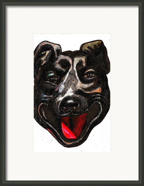 Portrait Of A Pooch Framed Print By Al Goldfarb