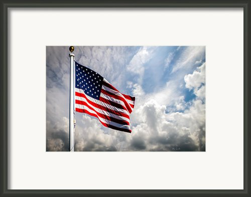 Portrait Of The United States Of America Flag Framed Print By Bob Orsillo
