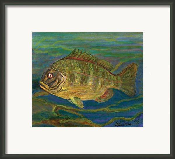 Predatory Fish Framed Print By Anna Folkartanna Maciejewska-dyba