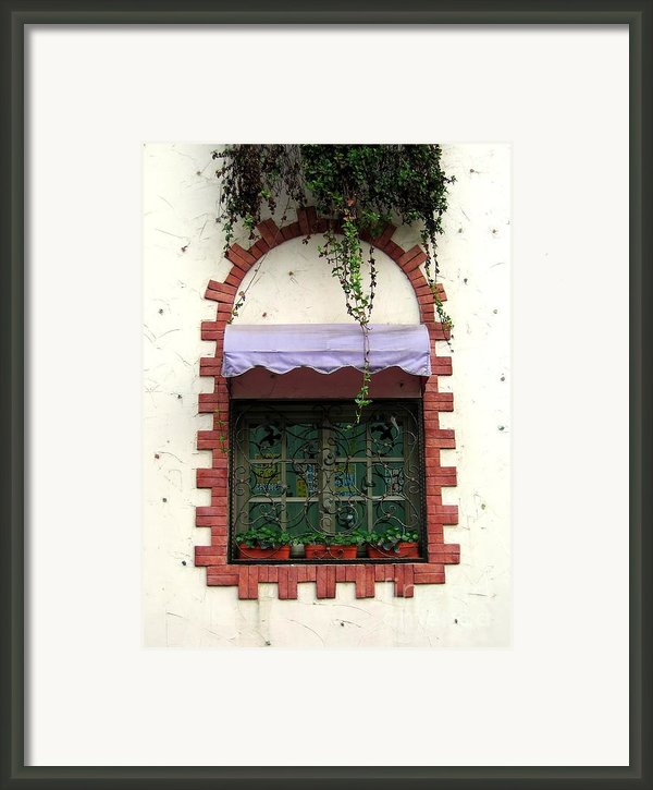 Pretty Decorated Window Framed Print By Yali Shi