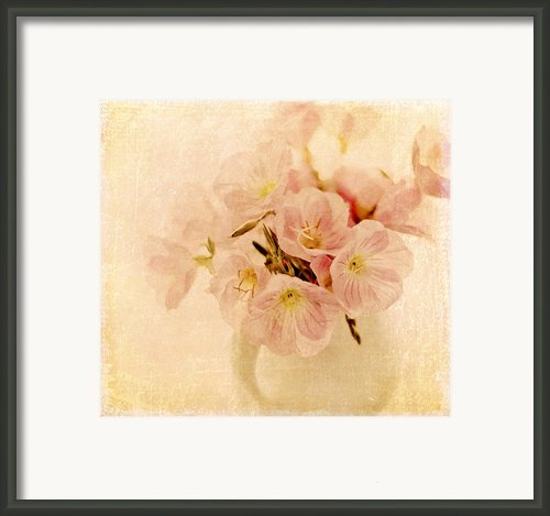 Primrose Delights Framed Print By Linde Townsend