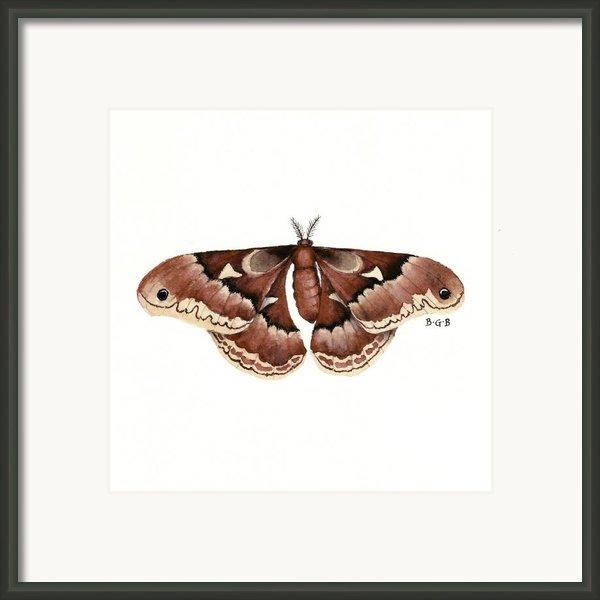 Promethea Moth Framed Print By Betsy Gray