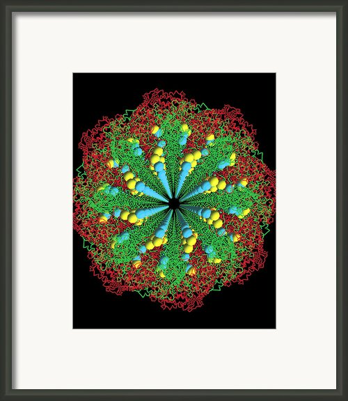 Protein Nanotube Framed Print By Nasa