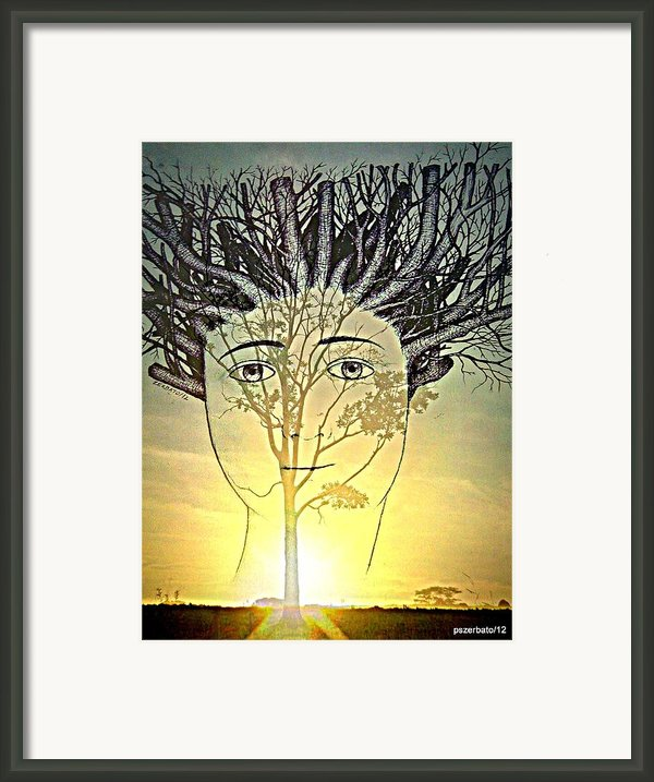 Prune Early All The Questions Framed Print By Paulo Zerbato
