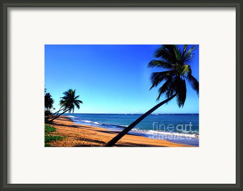 Puerto Rico Beach Framed Print By Thomas R Fletcher