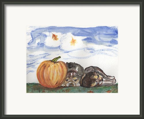 Pumpkin And Puppies Framed Print By Pamela Wilson