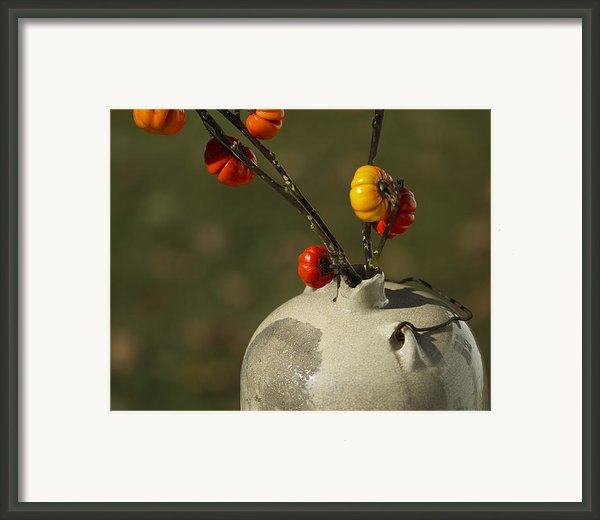 Pumpkin On A Stick In An Old Primitive Moonshine Jug Framed Print By Kathy Clark