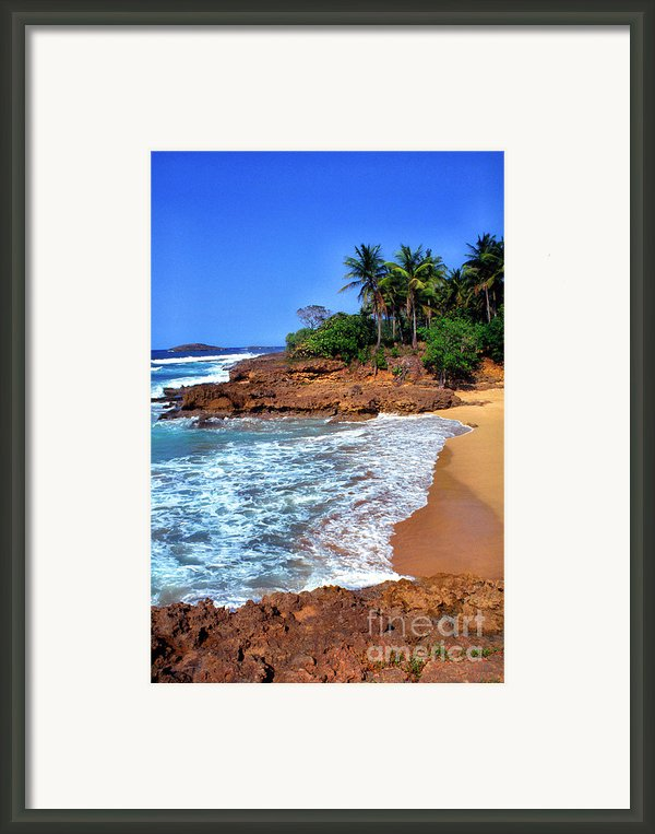 Punta Morillos Framed Print By Thomas R Fletcher