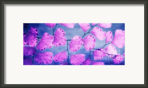 Purple And Blue Framed Print By Kristin Kreet
